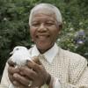 Mandela Day : « Madiba », l'homme à un seul mandat !