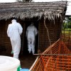 RDC : Les autorités declarent la fin de l'épidémie d'Ebola