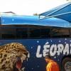 Denis Kambayi: « L'achat du nouveau bus pour les léopards coupe court à la polémique sur la cagnotte du CHAN »