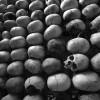 Burundi: le CNDD-FDD, le parti au pouvoir, remet en cause le génocide rwandais