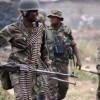 Nord -Kivu: les FARDC récupèrent des mains des adf trois de ses positions en territoire de Beni, Cependant perdent deux de ses officiers lors de ces attaques