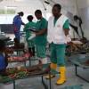 Baisse de cas de choléra au Nord-Kivu : la moyenne journalière est passée de 150 cas à 21