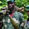 Nord-Kivu: l'armée ne peut pas s'installer en permanence dans le Parc des Virunga