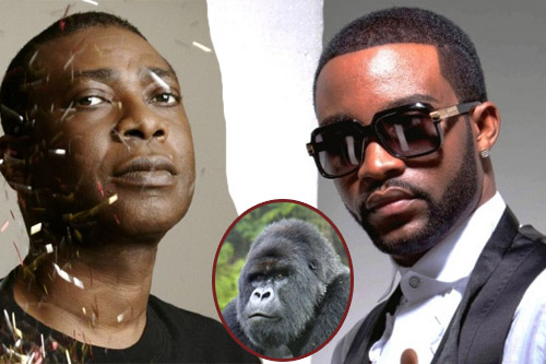 fally ipupa et youssou ndour sauvent les gorilles du congo - Fally Ipupa Mariage
