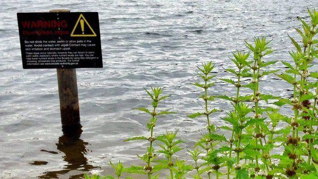Le seul signe au bord de l'eau a été mis en place le lundi suivant le vandalisme