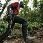 Nord-Kivu : Deux bléssés dans une attaque contre un convoi escorté par les FARDC dans le parc Virunga