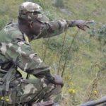 Insécurité au Nord Kivu : L'armée annonce avoir tué l'un des trois principaux commandants des rebelles ADF