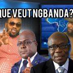 [VIDEO] QUE VEUT NGBANDA ET LES RESISTANTS ? ODON PAMBU REPOND