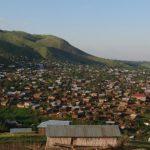Rutshuru : Un bandit tué et deux autres capturés dans le jardin theicole de Ngerie