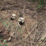 RDC Une nouvelle fosse commune découverte à Kinshasa (Georges Kapiamba)
