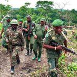 Nord Kivu: Les FARDC ont tué 16 rebelles ADF et récupéré la localité de Loselose