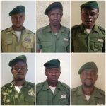Nord – Kivu : Six eco-gardes tués par des hommes armés au parc de Virunga