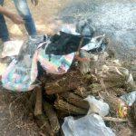 Lomami : Le parquet incinère des colis de chanvres saisis à la gare SNCC à Mwene-ditu